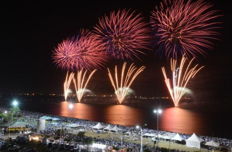 Fogos de artifício na véspera de Ano Novo provocam 'massacre' de pássaros em Roma