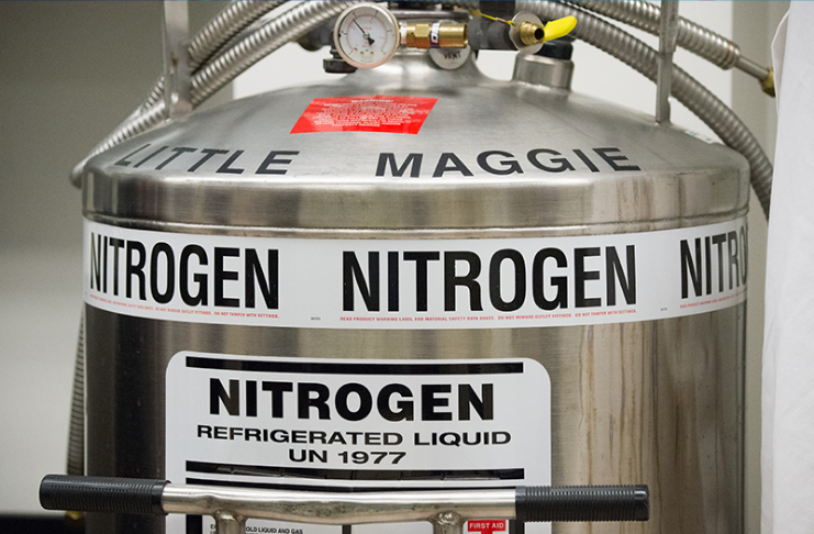 Vazamento de nitrogênio mata 6 na avicultura da Geórgia